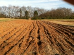 Ploughed and Cultivated